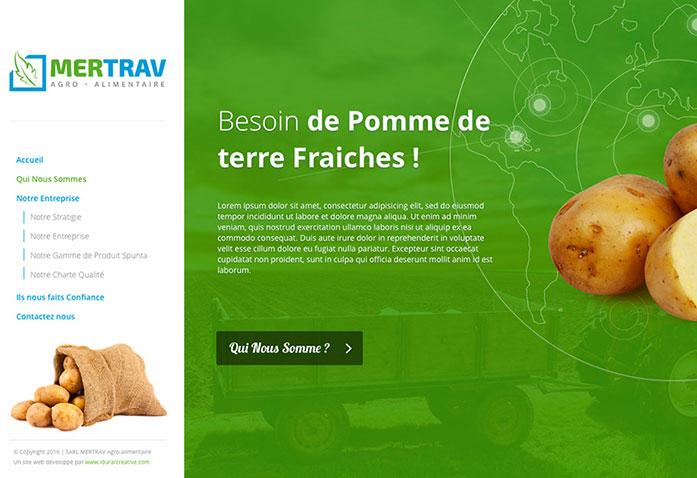 Agence Web Alger