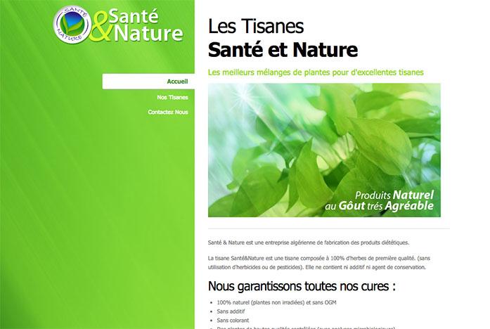 Agence Web Algerie