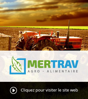 Creation site web Algérie